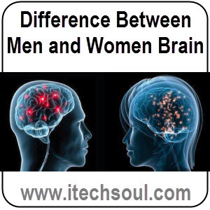 Difference-Between-Men-and-Women-Brain