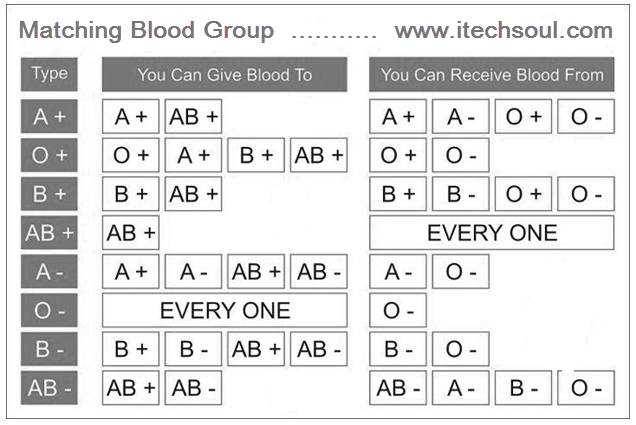 blood group donor and acceptor chart: Some important information about matching blood group for blood