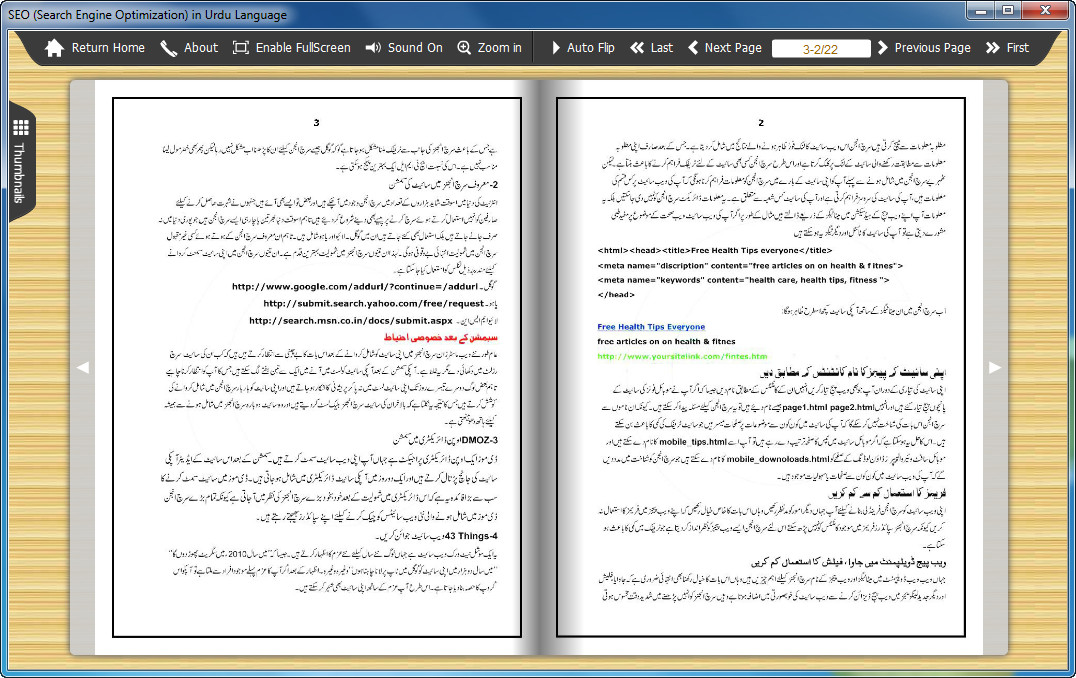 SEO (Search Engine Optimization) in Urdu Language (2)