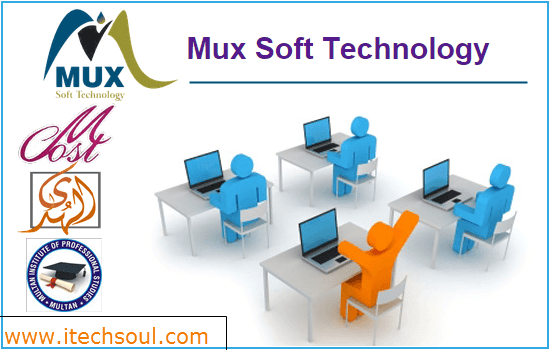 Mux Soft Technology