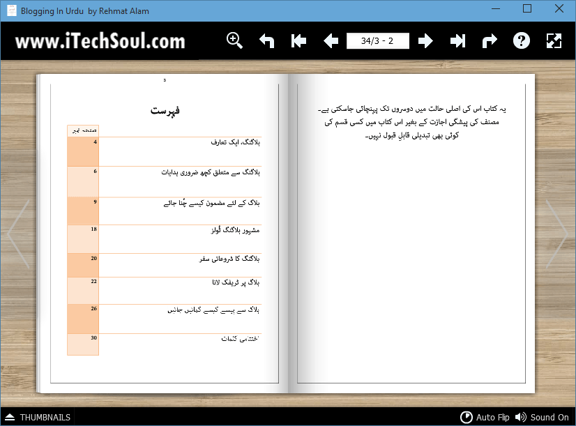 Blogging In Urdu (2)
