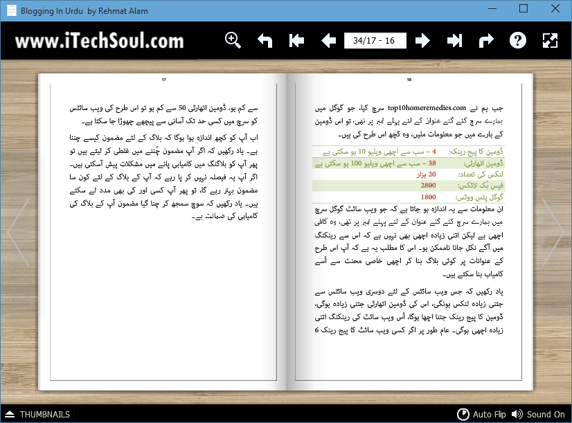 Blogging In Urdu (3)