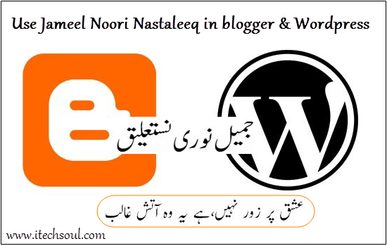 use Jameel Noori Nastaleeq in blogger and Wordpress