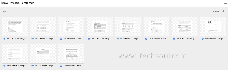11 (MCA) Curriculum vitaeResume templates