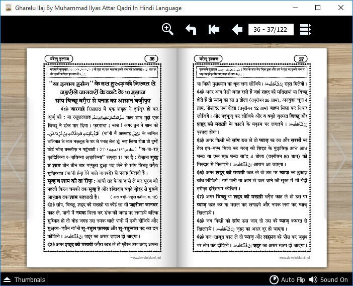 Gharelu Ilaj By Muhammad Ilyas Qadri In Hindi Language (4)