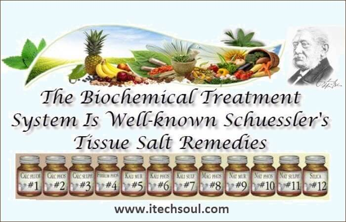 The Biochemical Treatment System