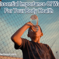 Essential Importance Of Water
