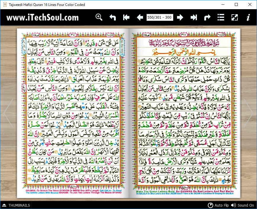 Tajweedi Hafizi Quran 16 Lines Four Color Coded (5)