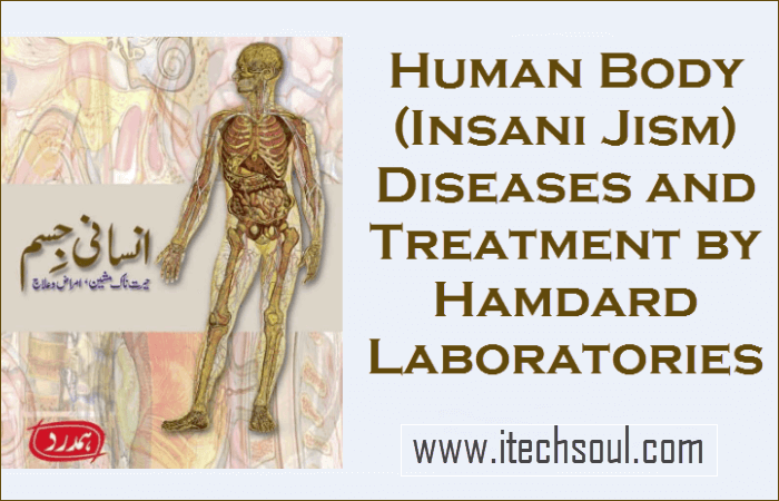 Human Body (Insani Jism)