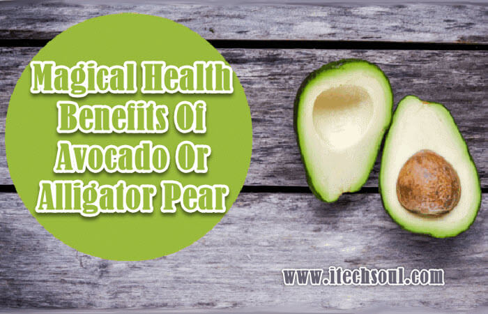 Magical Health Benefits Of  Avocado