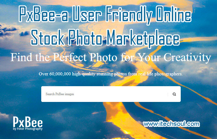 PxBee-a User Friendly Online Stock Photo Marketplace