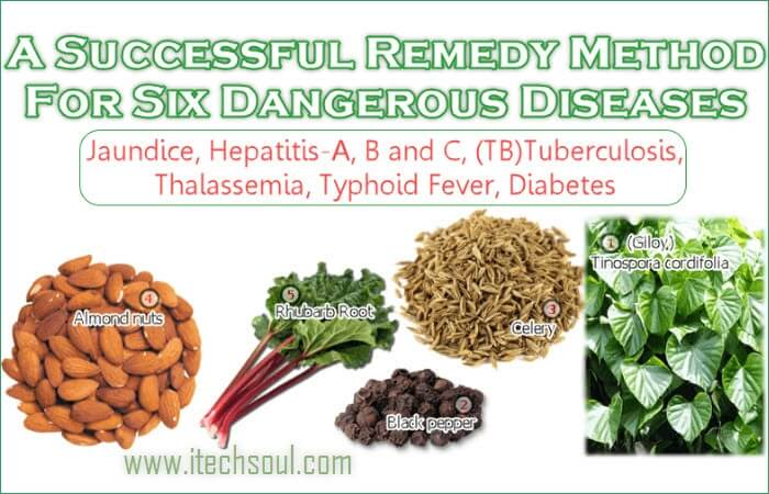 Six Dangerous Diseases