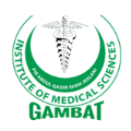 Gambat Institute of Medical Sciences