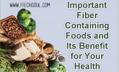 Fiber Containing Foods