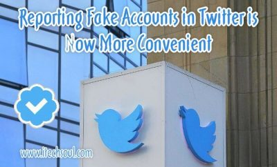 Reporting Fake Accounts in Twitter