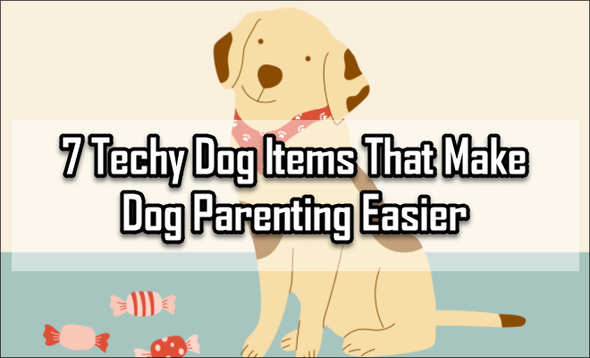 7 Techy Dog Items That Make Dog Parenting Easier