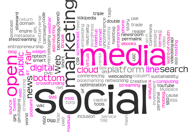 Social Media Marketing or SEO, Which One is Better for Your Brand?